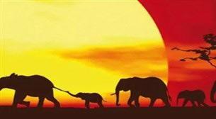Masterpiece - Savana Etkinlik Afişi
