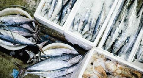 Balık Pazarı V Etkinlik Afişi